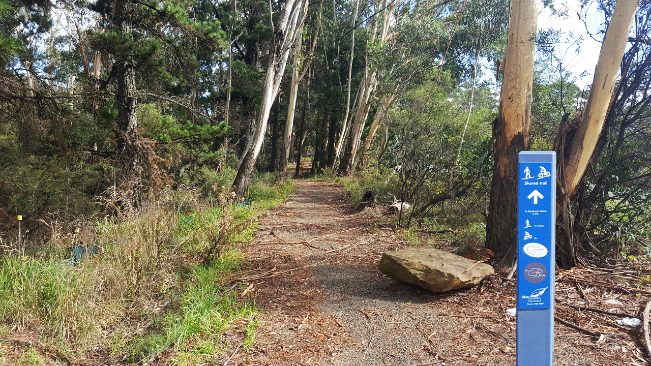 GBMT (Greater Blue Mountains Trail) - Blackheath/Katoomba - Self Guided Tour (BEGINNER FRIENDLY)