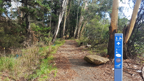 GBMT (Greater Blue Mountains Trail) - Katoomba - Self Guided Tour (BEGINNER FRIENDLY)