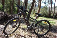Woodford - Half day E-mountain bike hire