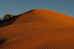 12 Day Simpson Desert Adventure 2021
