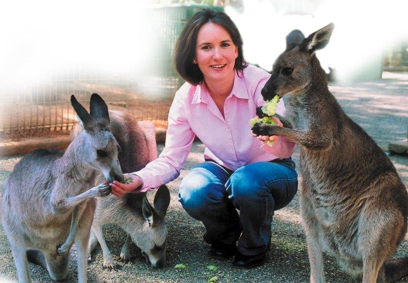 Blue Mountains Tour, small group incl. Featherdale Wildlife Park and  River Ferry Cruise        (BM1 Tour)
