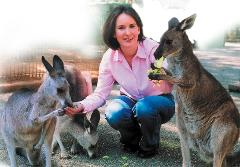 Blue Mountains Tour Sydney including Featherdale Wildlife Park, a Picnic Lunch and Ferry Cruise