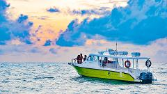SUNSET CRUISE FROM PARADISE 101 BY SEA HAWK/SEA HERON