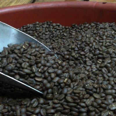 Mombacho Coffee Tour