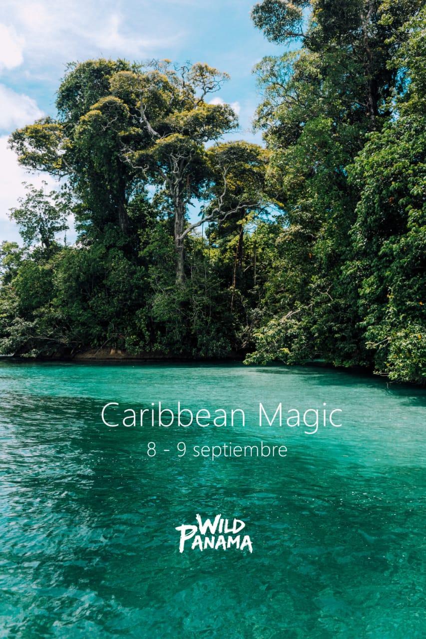 Panama Wild - Caribbean Magic