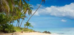 Escape to Corn Island