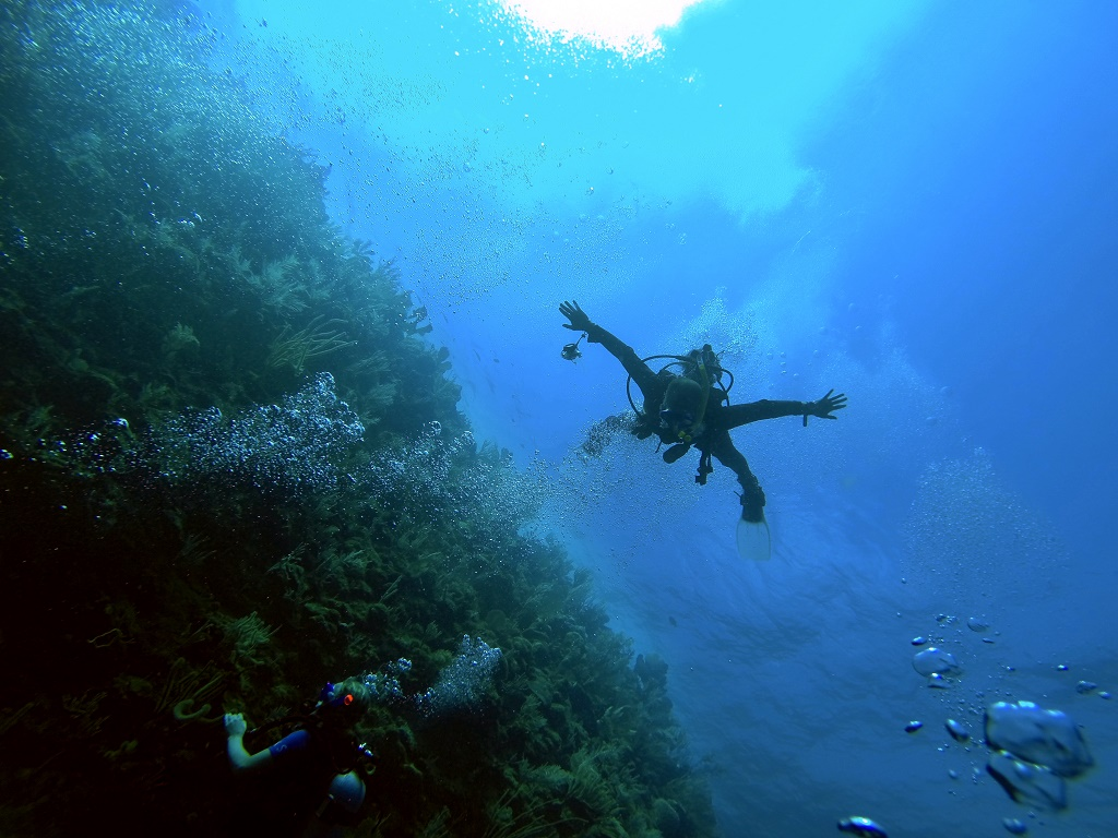 HONDURAS - Utila Diving Expedition