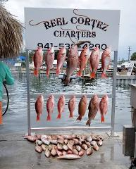 Red Snapper Trip - 10 hour