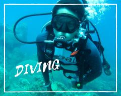 Private Diving at Pulau Payar Marine Park by Sea Heron