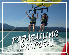 Private Parasailing Wedding Proposal Basic