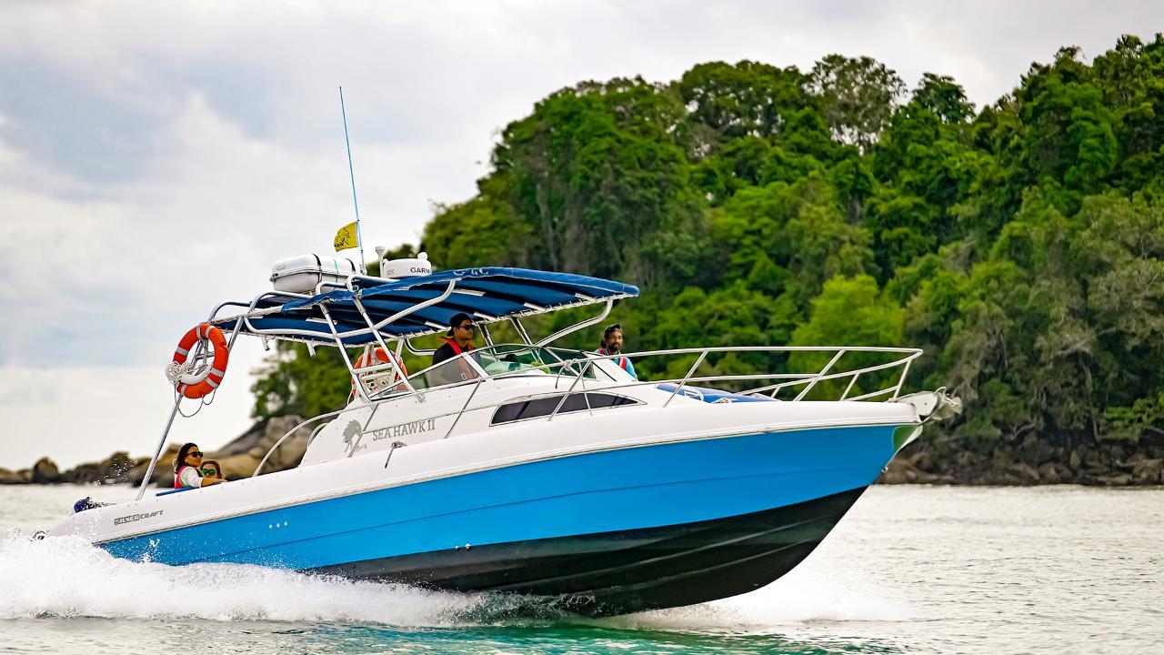 Cruise from Paradise 101 by Sea Hawk/Sea Heron