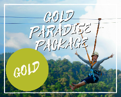 Gold Paradise Package