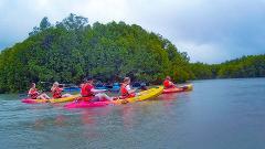 Mangrove Adventure & Swimming by Kayak