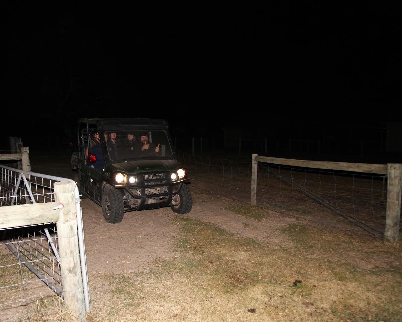 索夫特羊驼农场2小时夜间动物探险游