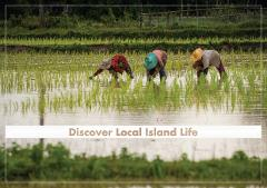 ECO Private Premium Discover Local  Island Life