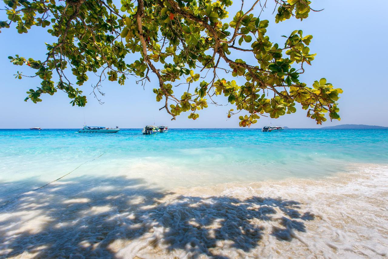Private Premium Four Islands by Speedboat