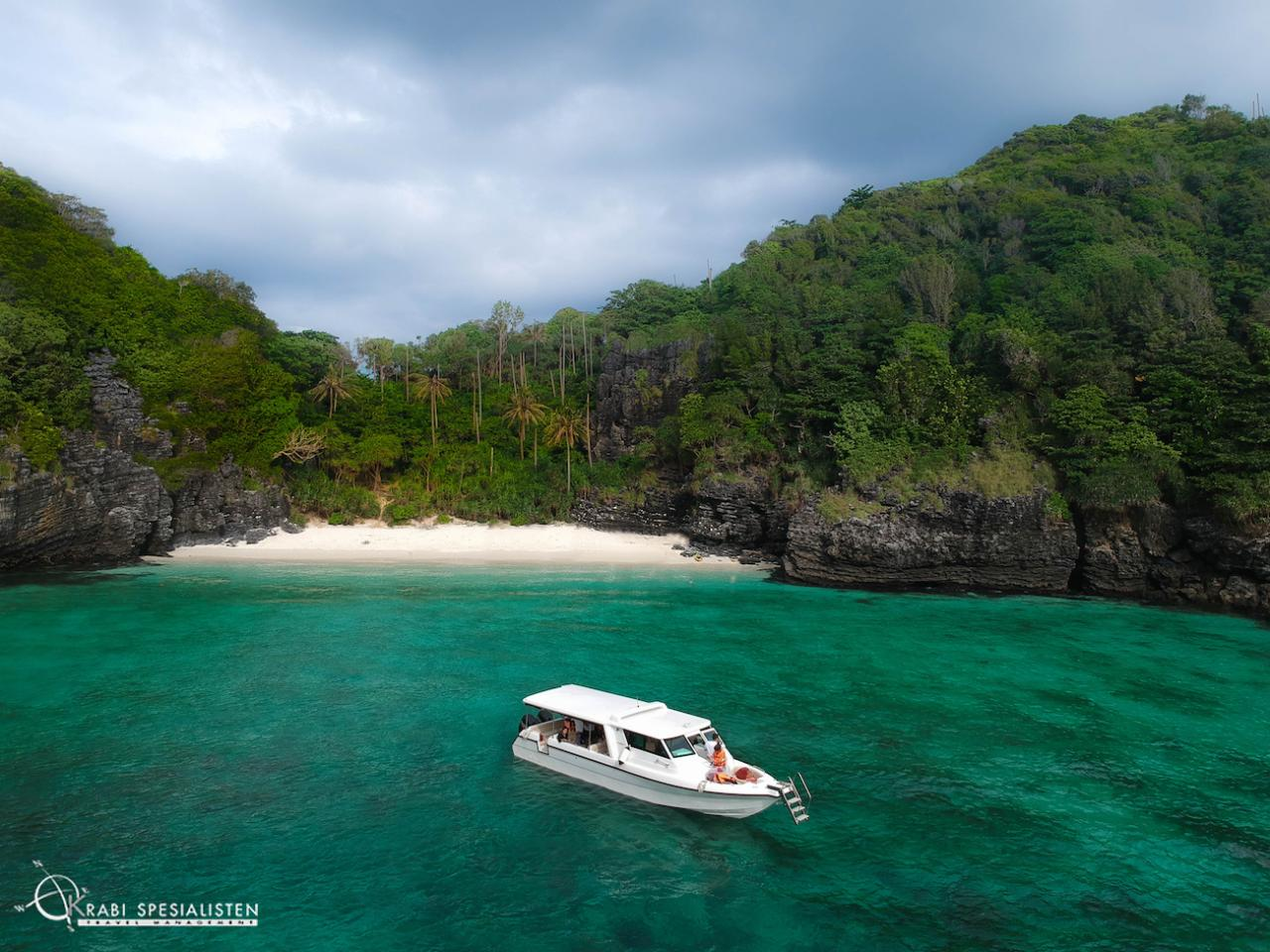 Phi Phi Island by Luxury Speedboat