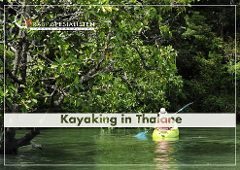 Kayaking Ao Thalane  Day Tour