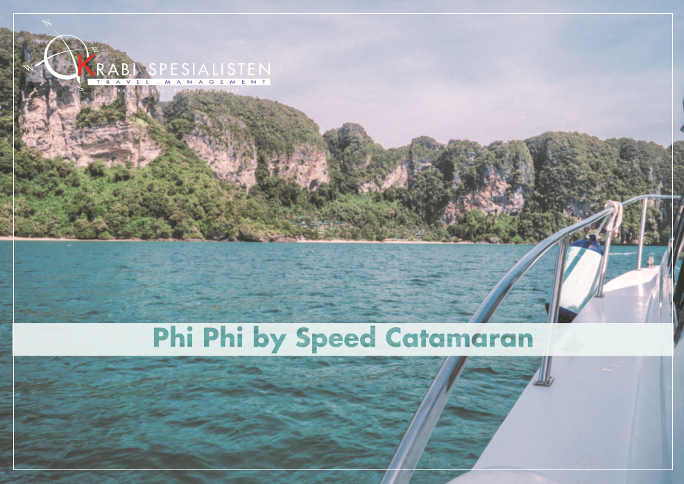 Phi Phi Island by Luxury Speedboat Day Tour