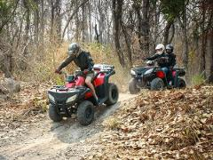 ATV Jungle Adventure