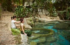 Jungle Hot Spring Spa (Phra Suthon Song Palang) Energizing Full Day Program