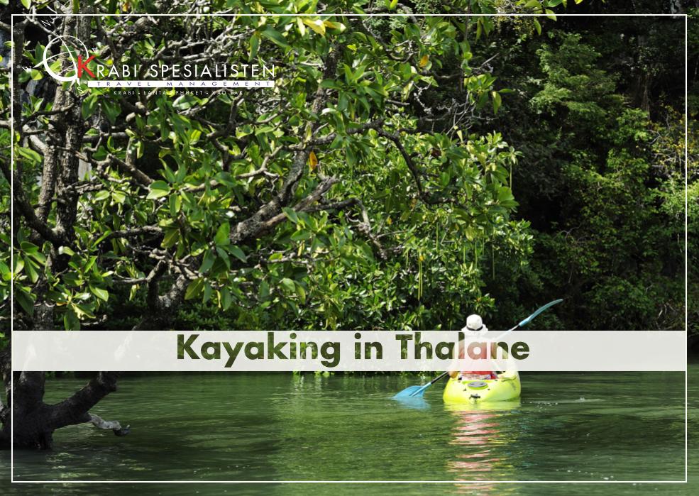 Kayaking Ao Thalane Half Day Tour