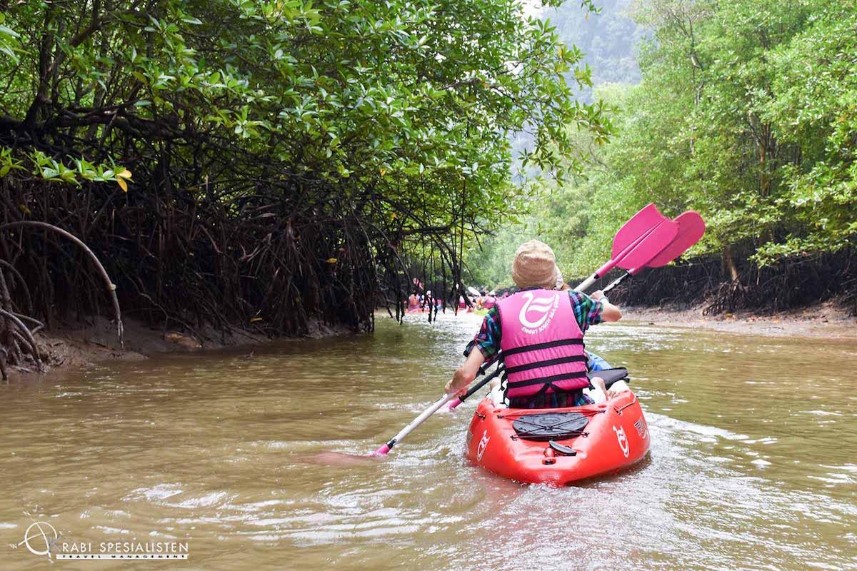 Kayaking Borthor Half Day Tour