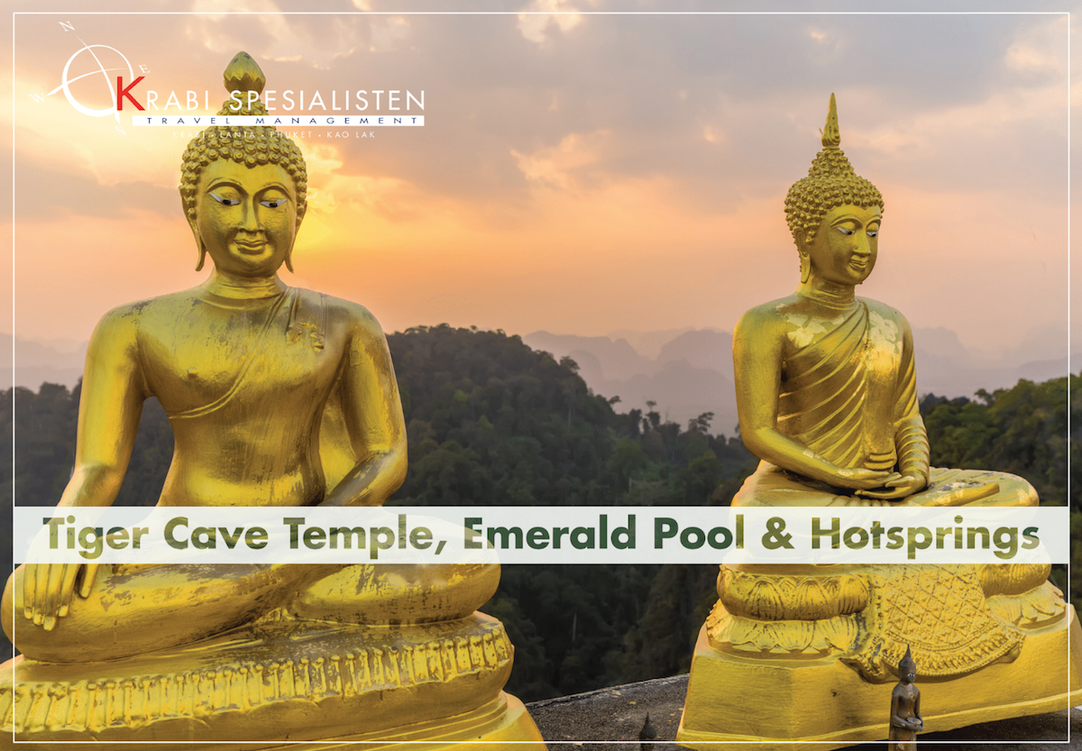 ECO Premium Jungle Hot Springs and Temple Tour