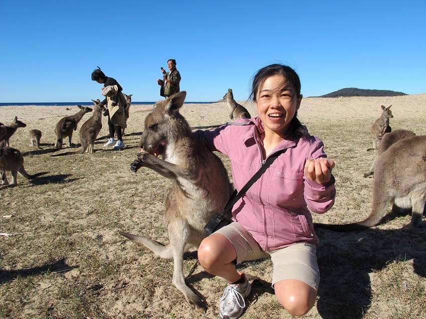 Batemans Bay Day Tour from Canberra including Kayaking