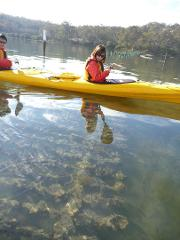 Oyster Tasting Kayak Tour - Batemans Bay