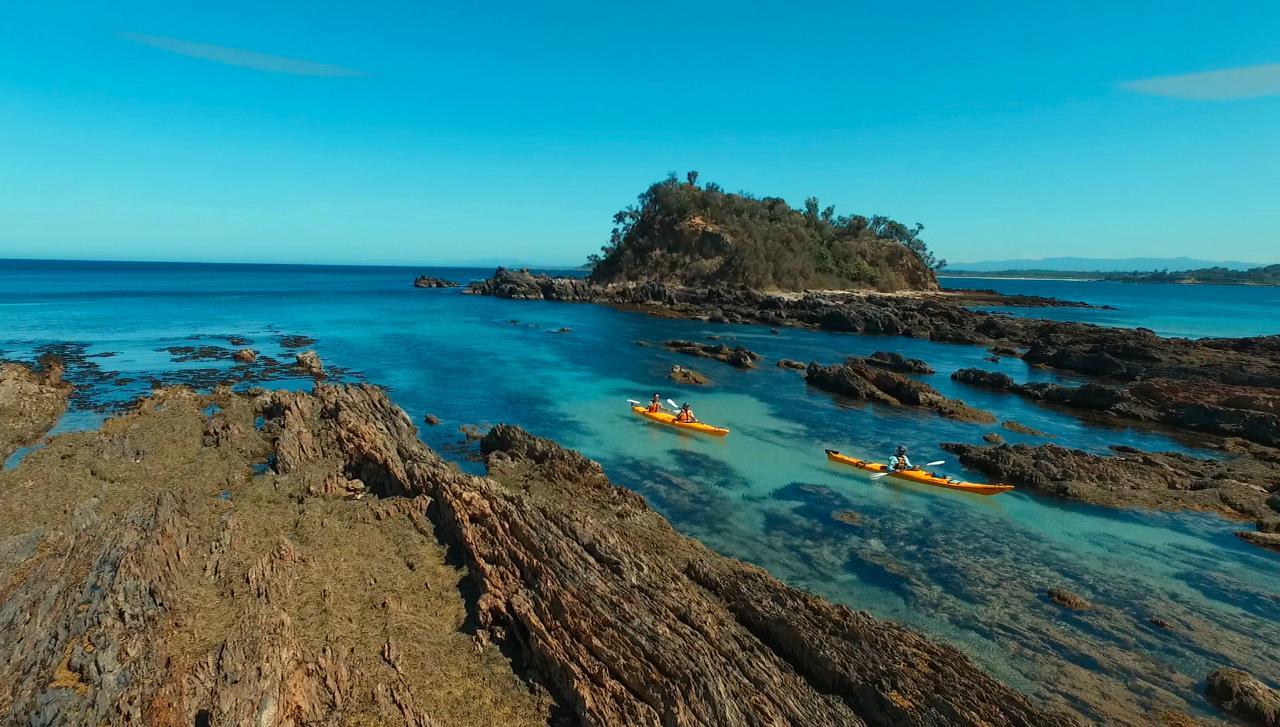 Half Day Sea Kayak Tour