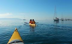 Batemans Harbour Coffee Kayak Tour