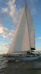Half Day Sail (Holiday Weekend)