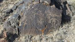 Weekly Public Tours of the Wells Petroglyph Preserve