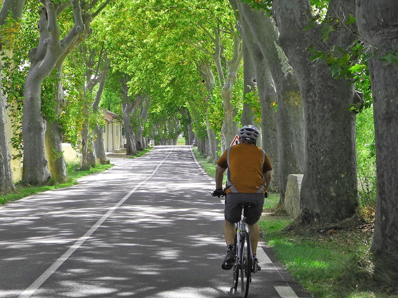 Cycling Tour Canal du Midi France