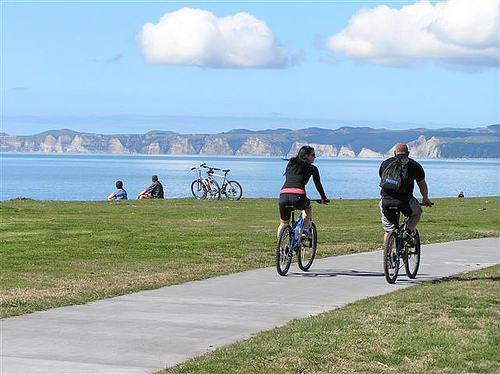 Book now: Tour de Hawkes Bay Estates - Self guided
