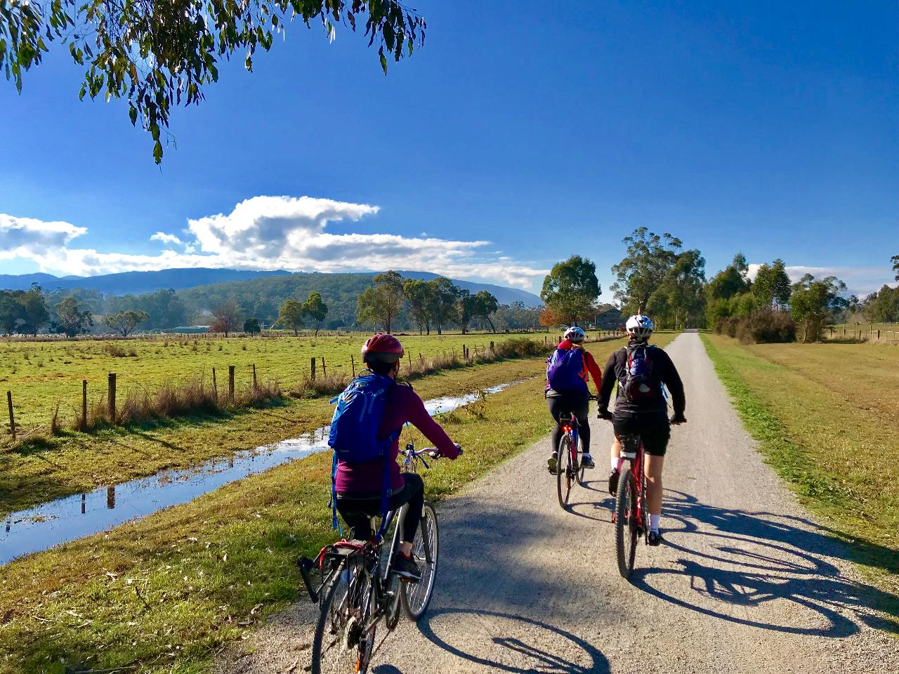 Yarra Valley Bike Tour – Lilydale to Warburton Rail Trail Day Trip