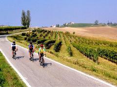 Tour de Piedmont Gourmet - Italy