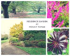 Spectacular Cool-Climate Blue Mountains Botanic Gardens 3 hour Caprice Limousine with Chauffeur