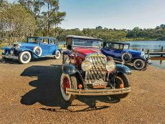 The Great Gatsby Morning or Afternoon Vintage Cadillac Tour  ( 3 hours )