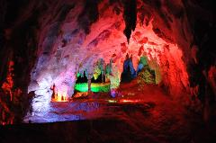 The Original 'Gems of Jenolan' Tour. Tour the spectacular Jenolan Caves. Choice of Morning or Afternoon Options.
