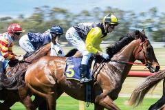 Melbourne Cup 2019 - Bunbury Race Track
