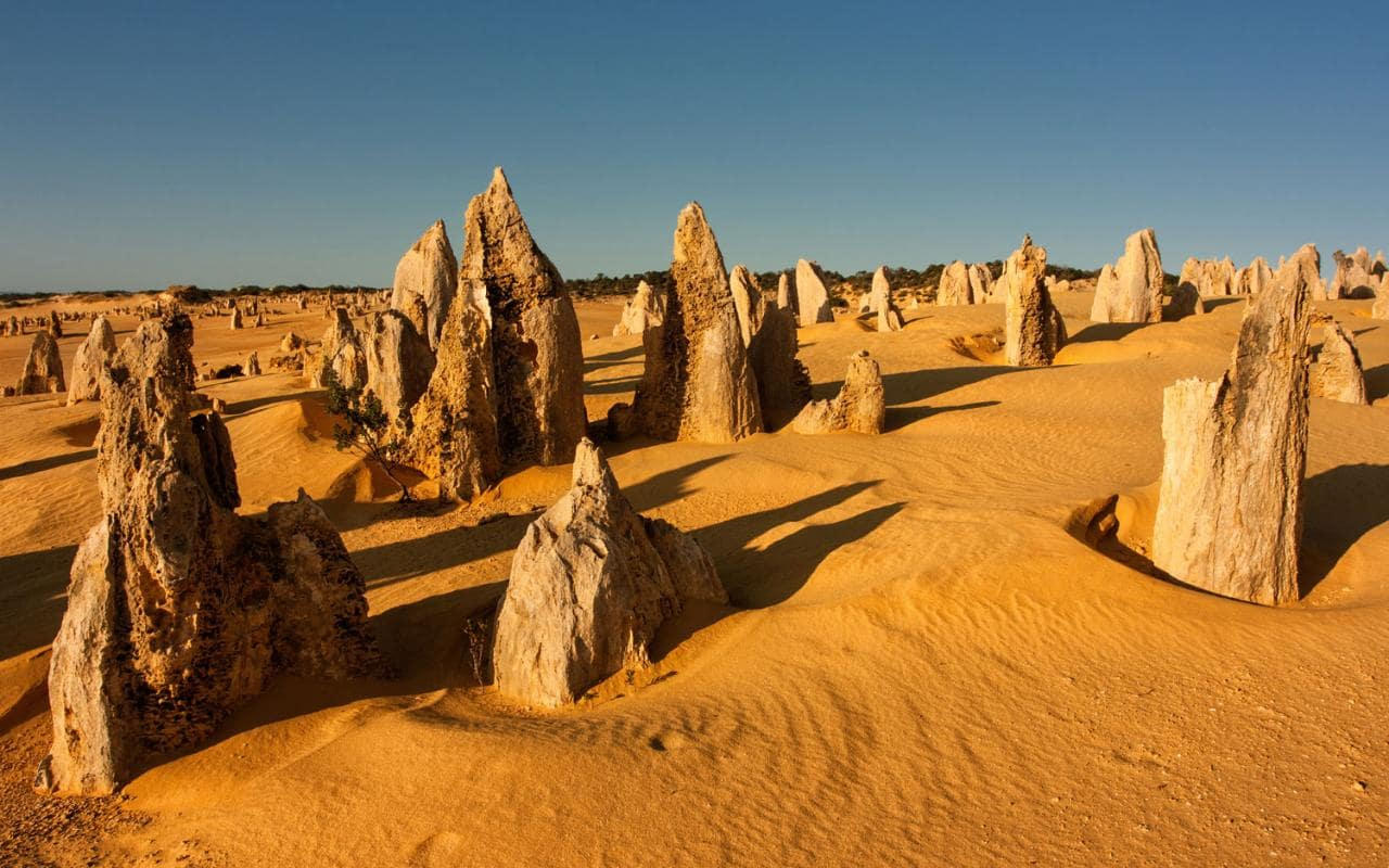 Pinnacles Yanchep National Park Lancelin Optional Sandboarding