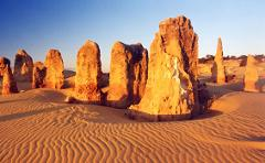 Pinnacles, Swan Valley Wildlife Park & Lancelin (Optional Sandboarding)