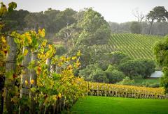 Orchard, Zig Zag, Swan Valley & Wildlife Park