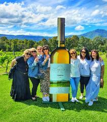 Private Shoalhaven Coast Wine Tour OPTION 2