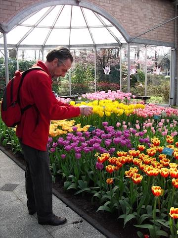 Keukenhof Tulip Garden and Haarlem