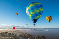 Gift Certificate for King Valley Balloon Flight including Breakfast