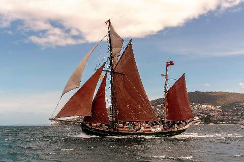 AWBF  1,5 hour morning/afternoon sails Tasmania Australia