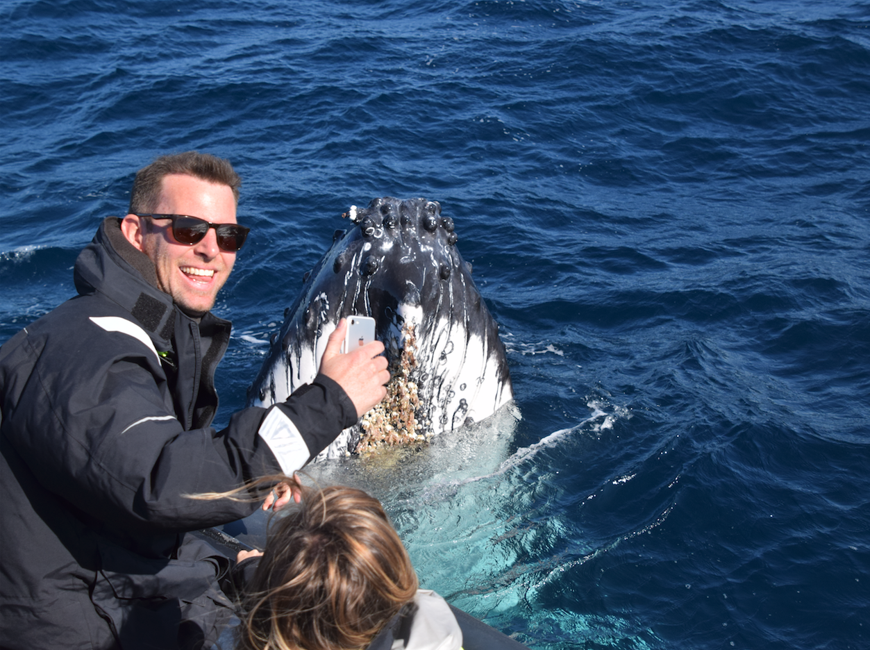 Private Whale Watching Tour on Ocean Extreme.